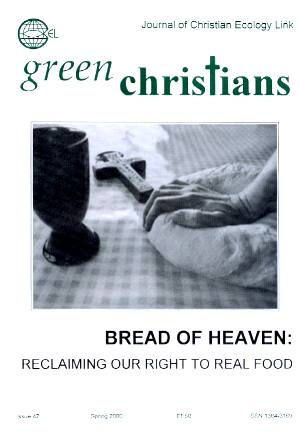 Picture of front cover of Green Christians